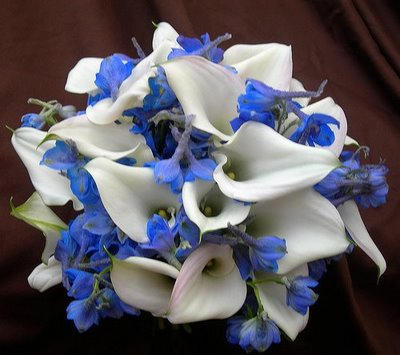 This would be my bouquet it 39s white calla lilies with a blue flower no