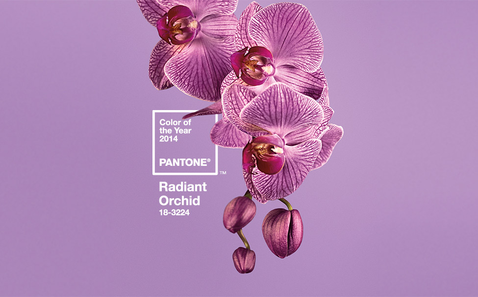 Color Inspiration: 2014 Pantone Color of the Ye...