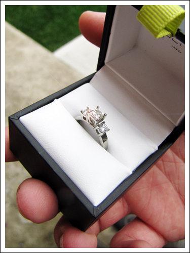10 years together, FINALLY engaged!! :  wedding 1000x500px LL 371f71e3 Img2411ay.jpeg